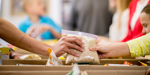 Collecting Food for Donations